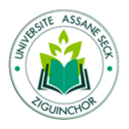 logo-assane-seck