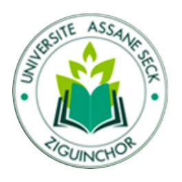 logo-assane-seck